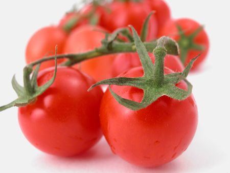 tomatoes against a white background - ready to eat! photo