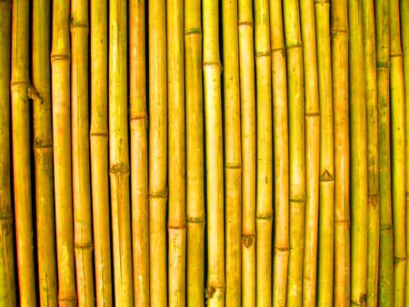 texture background of a bamboo wall
