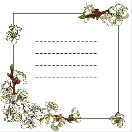 blossoming: Frame with blossoming Apple branches