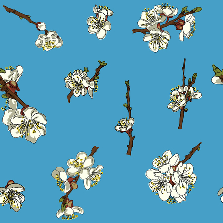 jointless: Seamless pattern of flowers of an Apple tree on a blue background