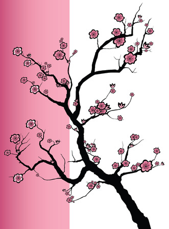Vector illustration of a Japanese cherry tree in blossom  Vector