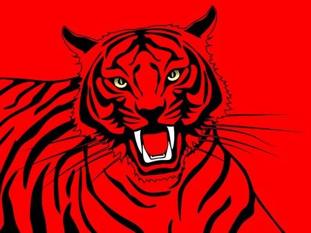 ferocious: a tiger on red background  Stock Photo