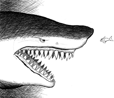 superiority: vector illustration of an agressive shark facing a small fish