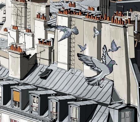 pigeons: illustration de toits � Paris