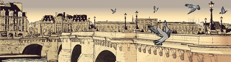 pont: illustration of a view of Paris (pont neuf)