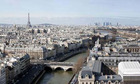 ile de la cite: paris, france - panorama from Notre-Dame