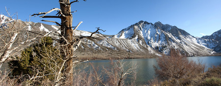 sierra: California - near Bishop - Sierra Nevada
