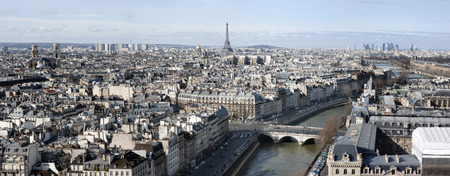 Panoramic aerial view of Paris with Eiffel tower 版權商用圖片
