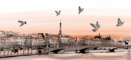 pigeons: View of Paris from Pont des arts - Vector illustration