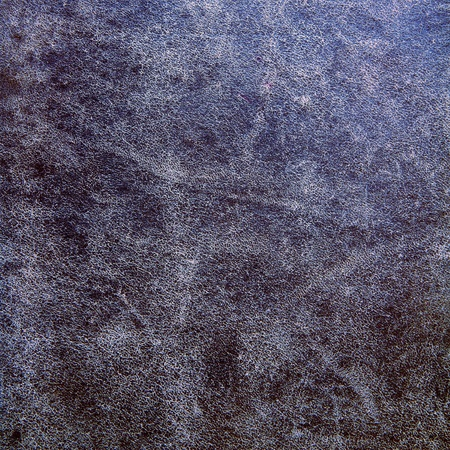 tooled leather: vecchia pelle