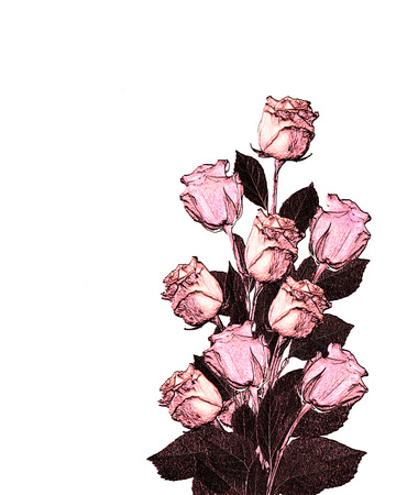 vegetate: abstract illustration bouquet flowers  roses