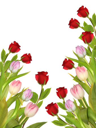 flowers tulips and roses on white  photo