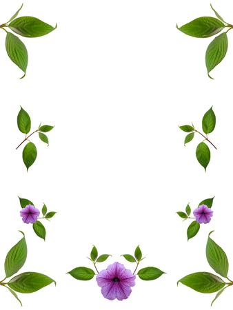 vegetate: floral frame on white background