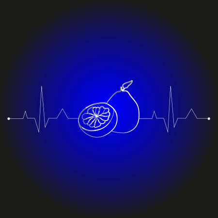fruits on a cardiogram in the shape of a heart for health care. illustration lemon