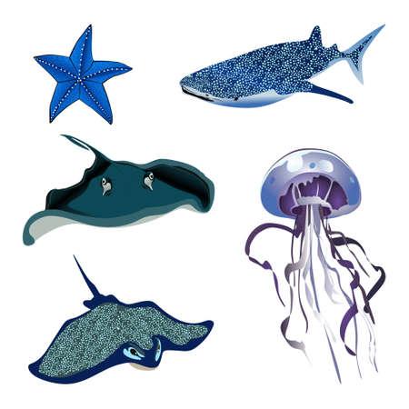 set of marine life stingray, jellyfish, whale, starfish vector illustration Иллюстрация