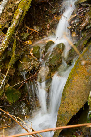 The small falls in a spring wood photo