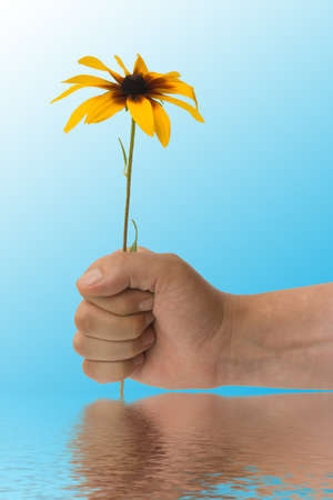 The stretched hand with a flower on a blue background Stock Photo - 1416106