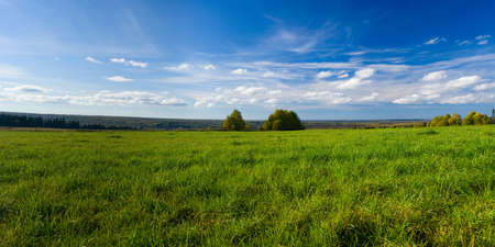 pano: Beautiful summer landscape. The nature. Panorama Stock Photo