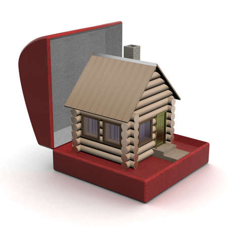 the habitation: Wooden small house in a gift box. 3D image.