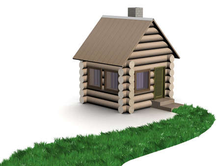path to success: Grassy path to a wooden small house. 3D image.