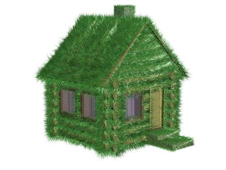 pipe dream: Peque�a casa verde cubierta con una hierba. Imagen en 3D.