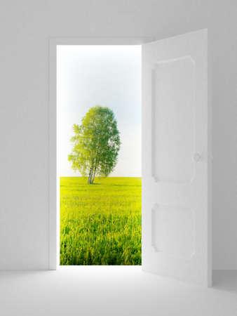 Landscape behind the open door. 3D image
