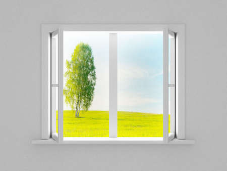 Landscape behind the open window. 3D image