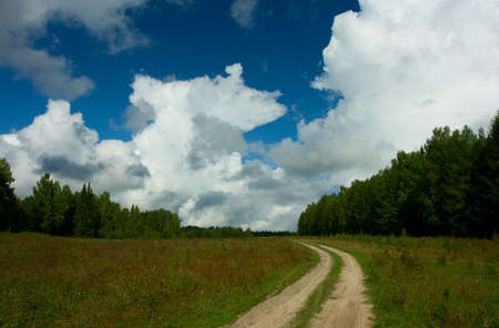 Road in the field. A rural landscape. photo