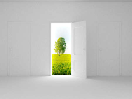 Landscape behind the open door. 3D image Stock Photo - 3576592