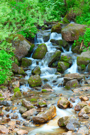 Small wood falls. A summer landscape Stock Photo - 5116737