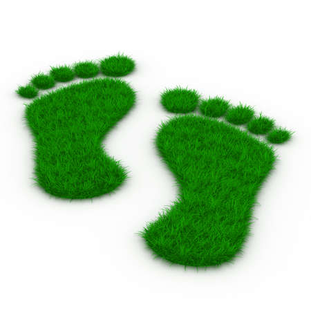footprint: Trace foot from grass. Isolated 3D image