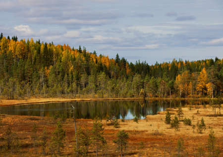 Wood lake. autumn landscape. nature. Karelia. Russia photo