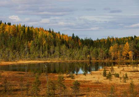 Wood lake. autumn landscape. nature. Karelia. Russia photo