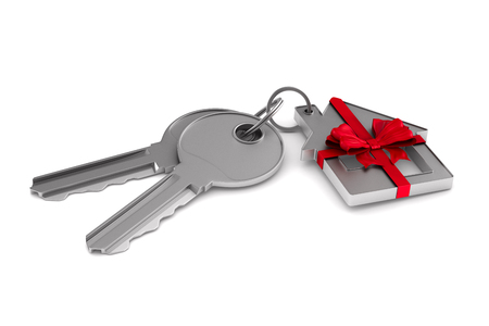 Two keys and trinket house on white background. isolated 3d illustration Imagens