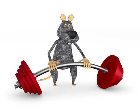 rat with barbell on white background. Isolated 3D illustration Stock Photo