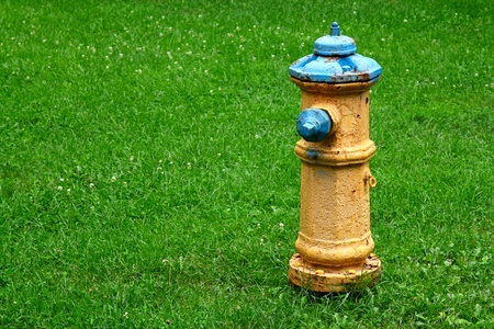 Yellowblue fire hydrant on the green grass background