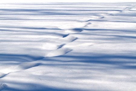 Steps and shadows on the snow. Shallow focus Stock Photo