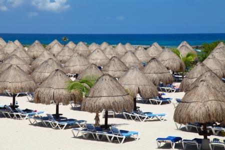 riviera maya: Rows of the palm leaf sun shades on the beach in Riviera Maya