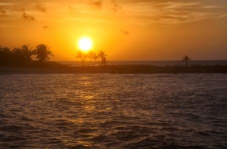 digitally generated image: Rising sun and palm silhouettes on the orange sky background. Riviera Maya Stock Photo