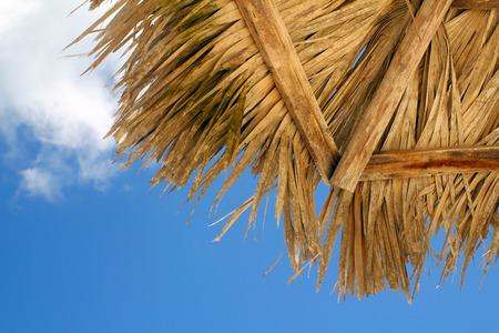 Beach palm ambrella, view from below, shallow focus