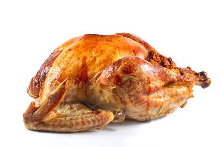 Roast turkey isolated on white background, shallow focus