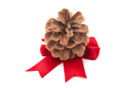 Pinecone with Christmas ribbon isolated on white, shallow focus