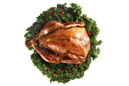Roast turkey isolated, shallow focus