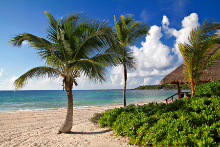 Beach house and palms on the blue sea and sky background, shallow focus Stock Photo