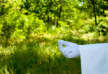 The waiters hand in a white glove and with a white napkin shows with the fingers a pinch pinch three fingers on the left on a green background of trees and bushes on a blused background Stock Photo
