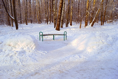 Bench in winter park  photo