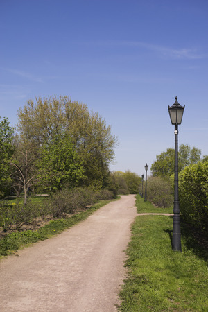 electric avenue: Foot path in park.