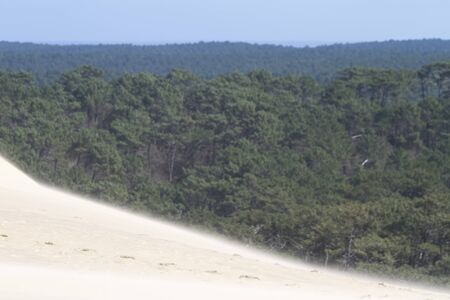 The Dune of Pilat is the tallest sand dune in Europe. It is located in La Teste-de-Buch in the Arcachon Bay area, France, 60 km from Bordeaux. With more than one million visitors per year, the Dune of Pilat is a famous tourist destination.