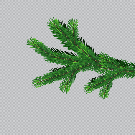 Christmas tree with beautiful lights. Branch isolated. Vector illustration on beautiful background. Banco de Imagens - 121758341