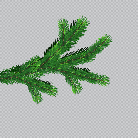 Christmas tree with beautiful lights. Branch isolated. Vector illustration on beautiful background. Banco de Imagens - 121758346